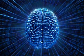 chiropractor brain