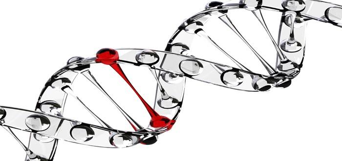 oncogene mesothelioma