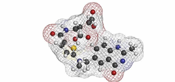 Mesothelioma Drug CRS-207 Looks Promising