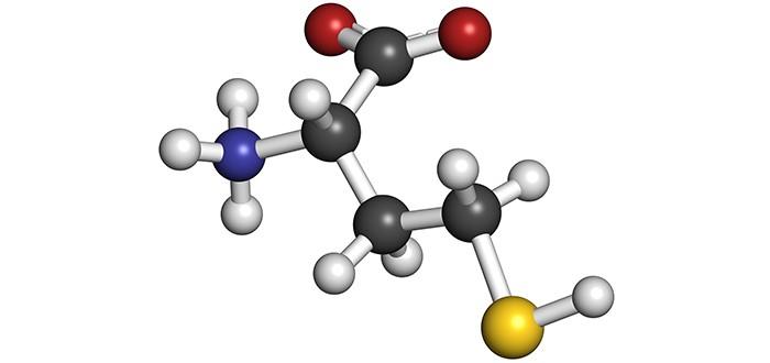 mesothelioma biomarker