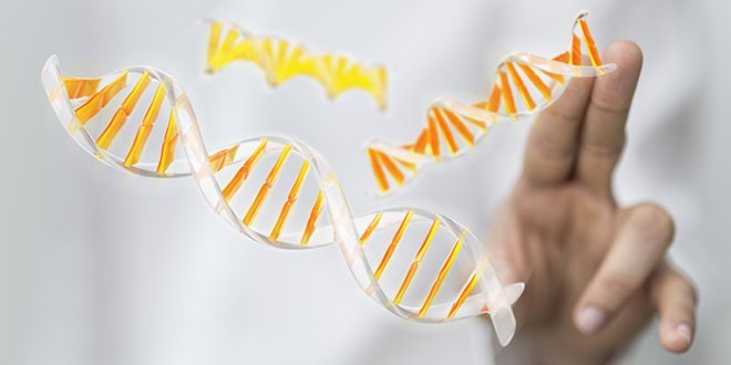 Many Mesothelioma Patients Have a Gene Mutation