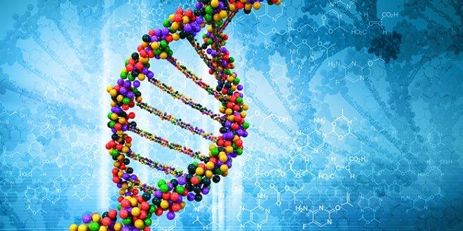 Customizing Mesothelioma Treatments Based on Genetics